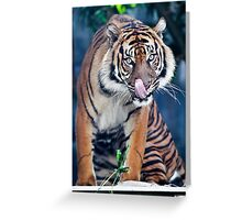 Hungry - licking lips Greeting Card