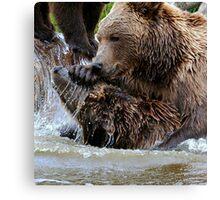 Bear games Canvas Print
