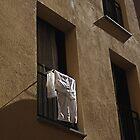 Hanging Around in Girona by nancyb926