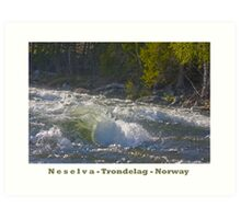 Water powers - Nesselva . Norway. Brown Sugar Story.Featured in Group Fishlike . Favorites: 1 Views: 324 . Thx! Art Print