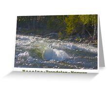 Water powers - Nesselva . Norway. Brown Sugar Story.Featured in Group Fishlike . Favorites: 1 Views: 324 . Thx! Greeting Card