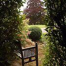 Open Garden, Rydon House by Mike  Waldron