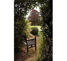 Open Garden, Rydon House Photographic Print