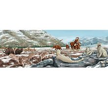 Palaeozoic scene Photographic Print