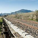 Cooma to Canberra by Rail by Mark Elshout