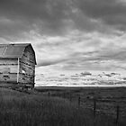 Old Milk River Barn by Kerri Gallagher