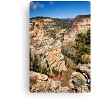 Brush Creek Gorge 2 Canvas Print