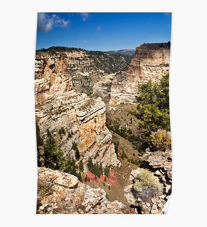 Brush Creek Gorge 2 Poster