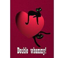 Double cat whammy Photographic Print