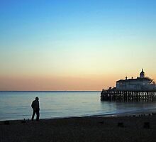 The pier at dusk, Eastbourne, Sussex by buttonpresser