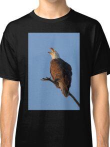 Bald Eagle at Sunset Classic T-Shirt