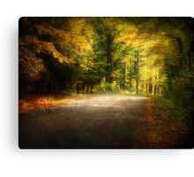 Autumn Lane • Door County Canvas Print