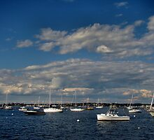 Gloucester Harbor by Carrie Blackwood