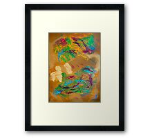Sioux Desert Framed Print