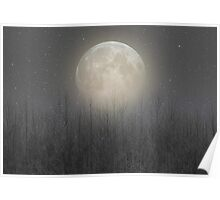 The Moon Shines Bright (Birch Moon II) Poster