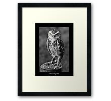 If looks could kill (1) ..... Framed Print