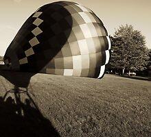 """Lift Off "" by Diane  Kramer"