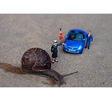 Stop: Snail Crossing Photographic Print