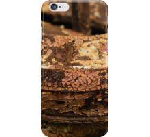 Rusty Past iPhone Case/Skin