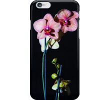 Orchids 2 iPhone Case/Skin