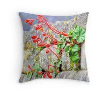 Flower in an Inca Wall Throw Pillow