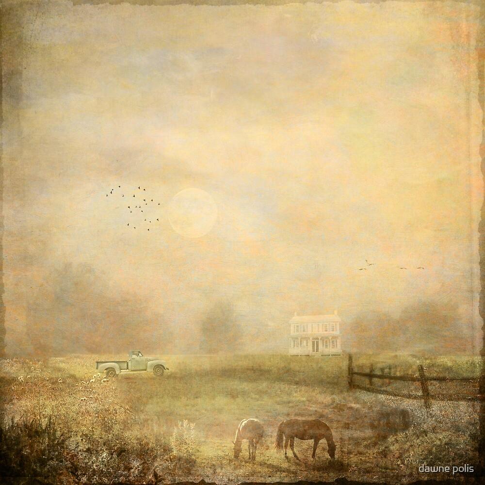 { misty morning farm } by dawne polis