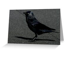 The Jackdaw Greeting Card