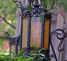 Lanterns by photojeanic
