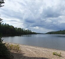 Watching The Storm Move, From The Beach At McManus Lake, Algonquin Park by Tracy Faught