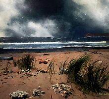 Wild Wind over Water by RC deWinter