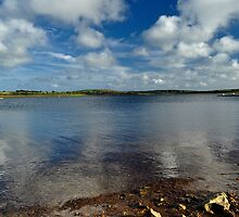Stithians Lake, Cornwall, UK by MungoPL