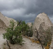 Tent Rocks by Rene Hales
