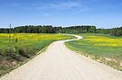 Curved Country Road by Martins Blumbergs