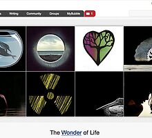 The Wisdom of Life's Background - 26 September 2010 by The RedBubble Homepage