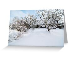 After a Snowstorm Greeting Card