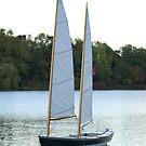 Sail Away by Lorelle Gromus