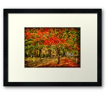 First signs of fall  II Framed Print