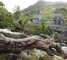 Derrycunnihy Church,Killarney National Park,Co.Kerry,Ireland. by Pat Duggan