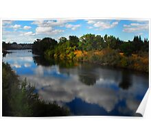 American River Reflection Poster