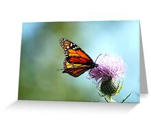A Monarch Butterfly Greeting Card