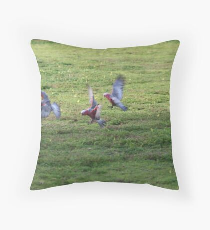 What A Pack Of Galahs Throw Pillow