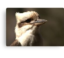 Check out my profile Canvas Print