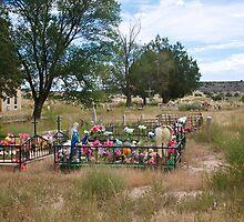 Cemeteries in the older neighborhoods by Ann Reece