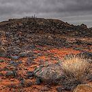 Barren Landscape by Rod Wilkinson
