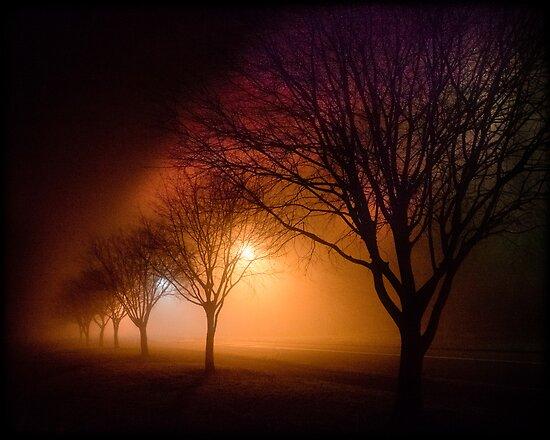 River Road Emu Plains at Night  by Manfred Belau