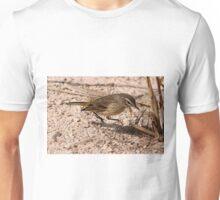 Juvenile Myrtle Warbler Unisex T-Shirt