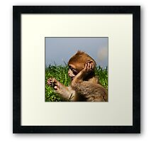 what was that you said!!! Framed Print