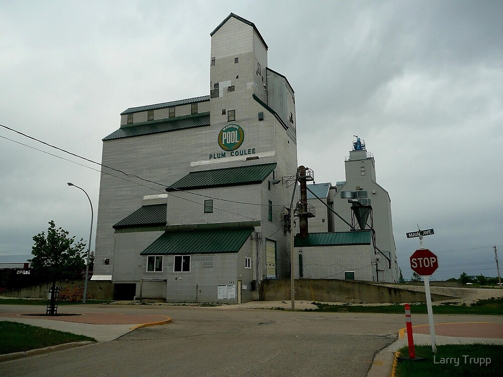 Prairie View Elevator by Larry Trupp