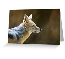 Day of the Jackal Greeting Card