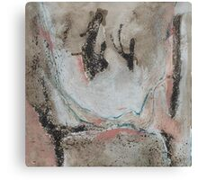 Untitled No 4: from 'Our Precious Earth' series Canvas Print